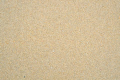Sandy beach texture. Royalty Free Stock Image
