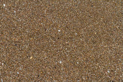Sandy Beach Textured Background Royalty Free Stock Photo