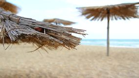 Sandy Beach With Thatched Umbrellas On A Windy Day. Turquoise sea and umbrellas on the sandy beach stock video
