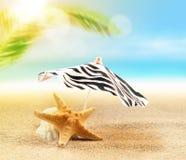 Sandy beach on the tropical coast Royalty Free Stock Photography
