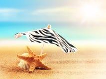Sandy beach on the tropical coast Stock Image