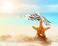Sandy beach on the tropical coast Royalty Free Stock Image