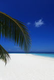 Sandy beach of tropical island Royalty Free Stock Photo
