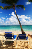 Sandy beach of tropical resort. With palm trees and two reclining chairs Royalty Free Stock Images
