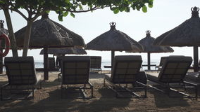 Sandy beach of the tropical resort with umbrellas and chaise lounges stock video footage