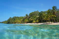 Sandy beach with tropical vegetation Caribbean sea Royalty Free Stock Photo