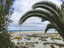 Sandy beach an turquoise ocean water trough palm trees. Royalty Free Stock Image