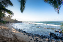 Sandy beach under the palm trees in Maui, Hawaii Royalty Free Stock Photography