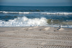 Sandy beach waves. Beach and Atlantic Ocean at New Jersey Shore with seagulls Stock Photography