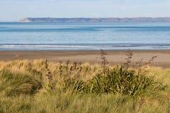 Sandy beach at Whites Bay, New Zealand Royalty Free Stock Photos