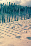 Sandy beach wityh wooden fence, Scotland Stock Photos