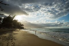Sandy Beaches av Maui Hawaii Royaltyfria Bilder