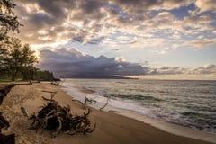 Sandy Beaches av Maui Hawaii Arkivbilder