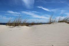 Sandy Beaches On Baltic Seaside natural imagem de stock