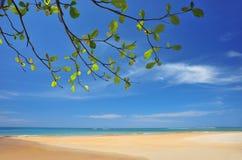 Sandy beaches Royalty Free Stock Photo