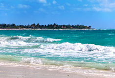 Sandy beaches of the Caribbean Sea  on Cayo Largo's island, Cuba Royalty Free Stock Photo