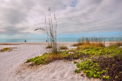 Sandy beautiful beach on the shore of the bay. Royalty Free Stock Image