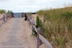 Sandy boardwalk. Cutting through the dunes heading to the beach Royalty Free Stock Photo