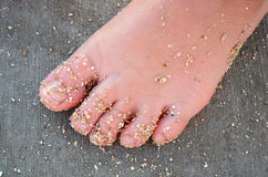 Sandy Child's Foot Stock Photos