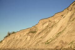 Sandy clay soil vertical breakage with plant roots and small isolated vegetation. Blue sky. Sea coast behind the shot stock image