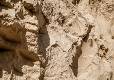 Sandy cliff. Erosion of soil Royalty Free Stock Images