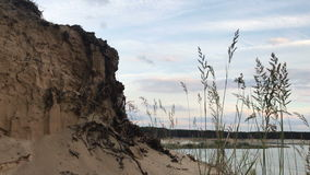 Sandy cliff with the roots of trees. Near the Lake stock video footage