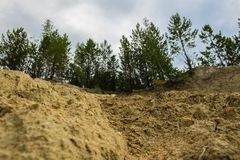 Sandy climbing the mountain. During a steep climb to the top of the mountain Stock Images