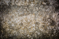 Sandy Concrete Texture Foto de Stock Royalty Free