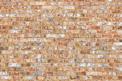 Sandy Coral Colored Brick Wall Stock Photos