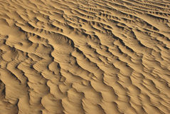 Sandy corrugation Stock Image