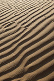Sandy corrugation. In the Arabian Desert Royalty Free Stock Photography