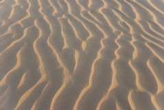 Sandy corrugation. In the Arabian Desert Royalty Free Stock Image