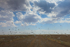 Sandy country road in the salt desert landscape on a hot summer. Day. Rain drops on the windshield Stock Photos