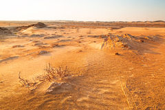 Sandy-Dünen in der Wüste nahe Abu Dhabi Lizenzfreies Stockbild