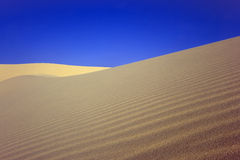 Sandy desert. Sandy dunes in desert and blue sky Royalty Free Stock Photos