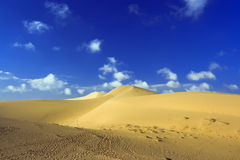 Sandy desert. Footprints on sand. Sandy desert Stock Image