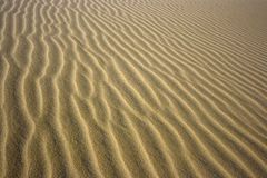 Sandy desert background Royalty Free Stock Photo