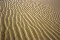 Sandy desert background. Sandhills background. Texture of sandy dunes in desert Royalty Free Stock Photo
