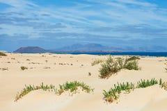 Sandy desert background landscape. Corralejo dunes with volcanic. Mountains in the horizon. Fuerteventura, Canary islands, Spain Stock Photos