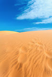 Sandy desert Royalty Free Stock Photos