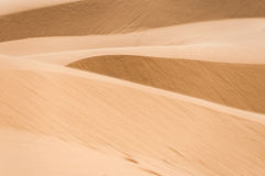 Sandy desert Royalty Free Stock Photo