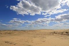Sandy desert scene. Nice landscape in sandy desert Stock Image