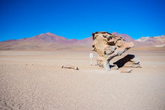 Sandy desert stretch on the Bolivian Andes Stock Images