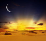 Sandy desert at sunset time Royalty Free Stock Photos