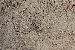 Sandy Dirt Ground Clutter Texture - parfait pour des jeux vidéo, la conception web, la conception visuelle ou des signes ! image libre de droits