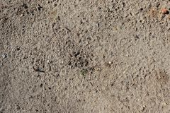 Sandy Dirt Ground Clutter Texture - perfect for videogames, web design, visual design or signs!. Image of sandy soil used as ground clutter that may be used for royalty free stock image