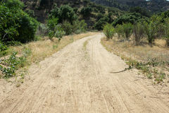 Sandy Dirt Road in Wilderness Royalty Free Stock Images
