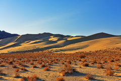 The sandy dune Eureka in desert Stock Photos