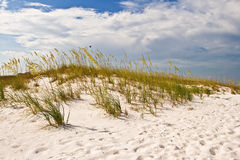 Sandy dunes Stock Photos