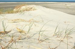 Sandy dunes Royalty Free Stock Images